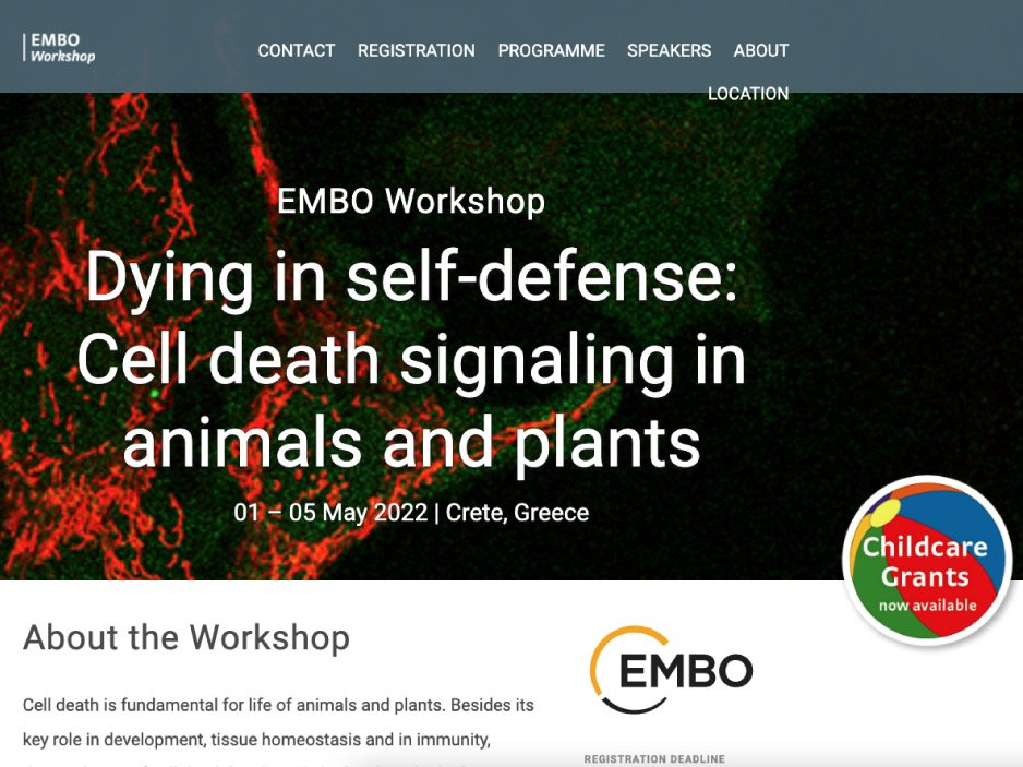 site_meetis_EMBO-Workshop-Dying-in-self-defence